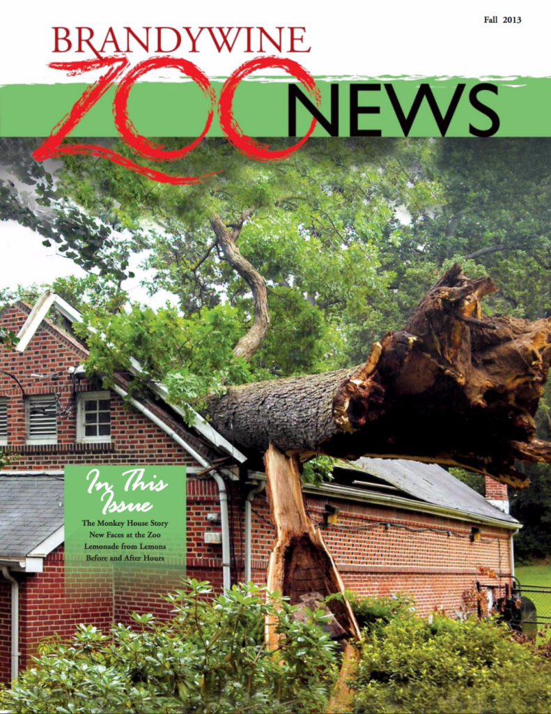 zoo_news_fall_2013_cover