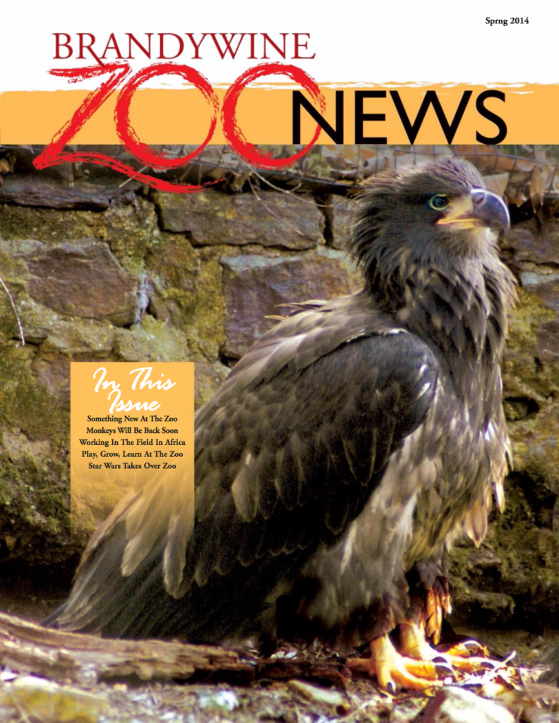 zoo_news_spring_2014_cover