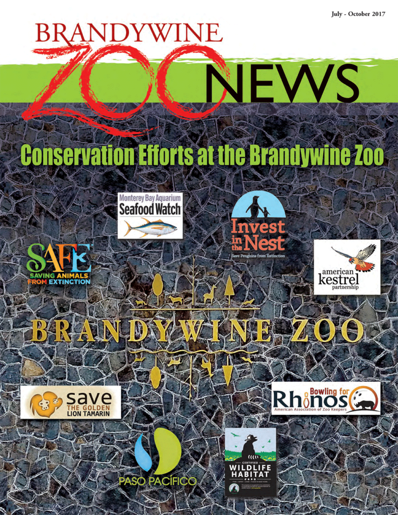 zoo-news-summer