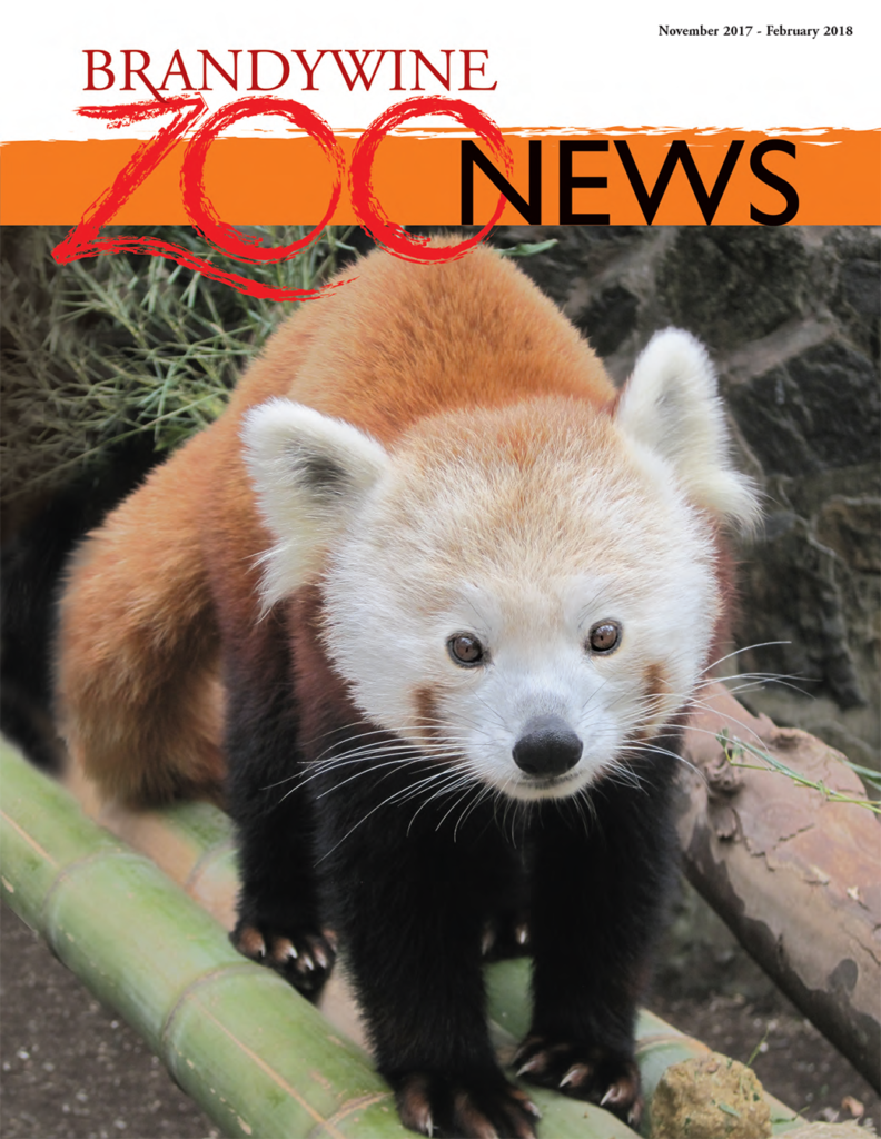 zoo-news-winter-2017